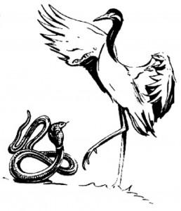 snake and crane