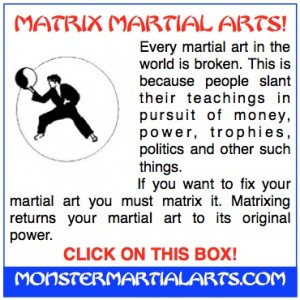 fix your martial art