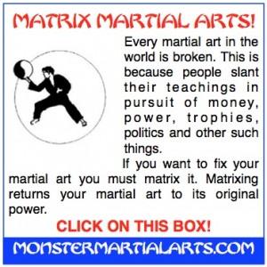 fix your martial art