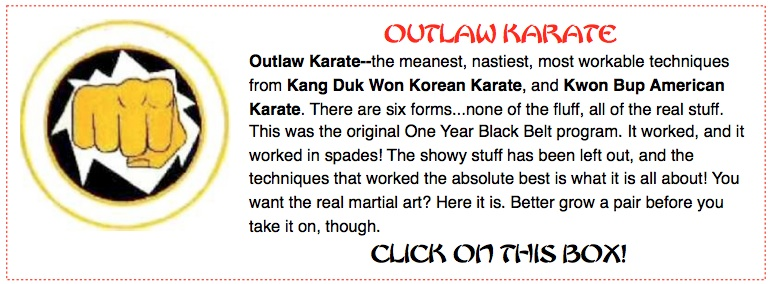 Real Karate