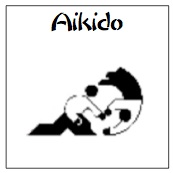 learn aikido now