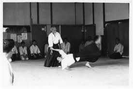 master of aikido