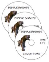temple karate