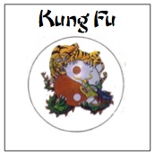 learn kung fu