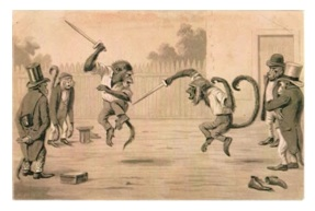 monkey martial arts