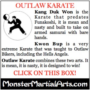outlaw martial art