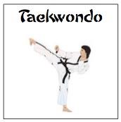 karate kicking course