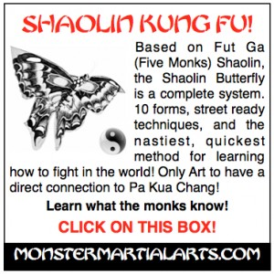 Martial arts online for free study of martial sport optimal physical