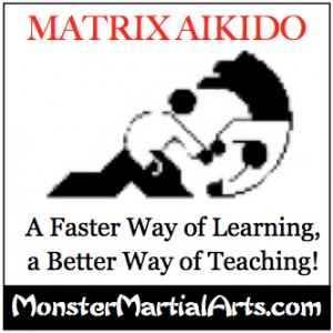 learn aikido DVD