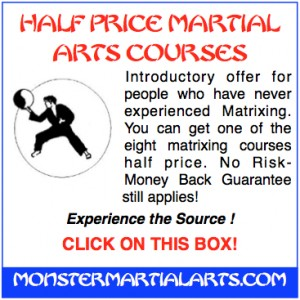 martial arts courses