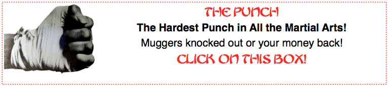 the hardest punch
